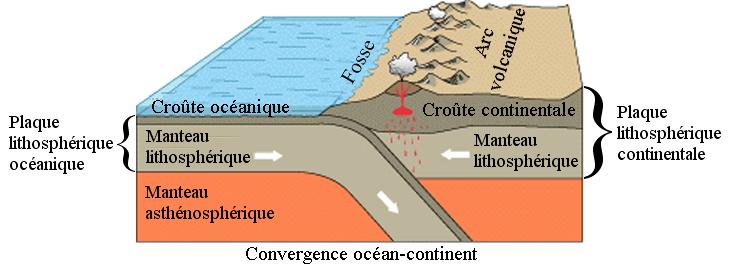 <b>Structure des plaques lithosphériques<br></b><i>Source : Subduction Convergence Océan Continent.png , Image du United States Geological Survey légendée en français par William Crochot (alias Medium69) et partiellement relégendée par Eudemon. via wikimedia commons, Domaine public</i>